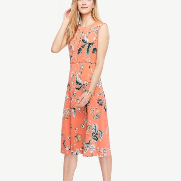 43cae184128a Ann Taylor Dresses & Skirts - Ann Taylor Coral Oasis Sleeveless Dress Size  12